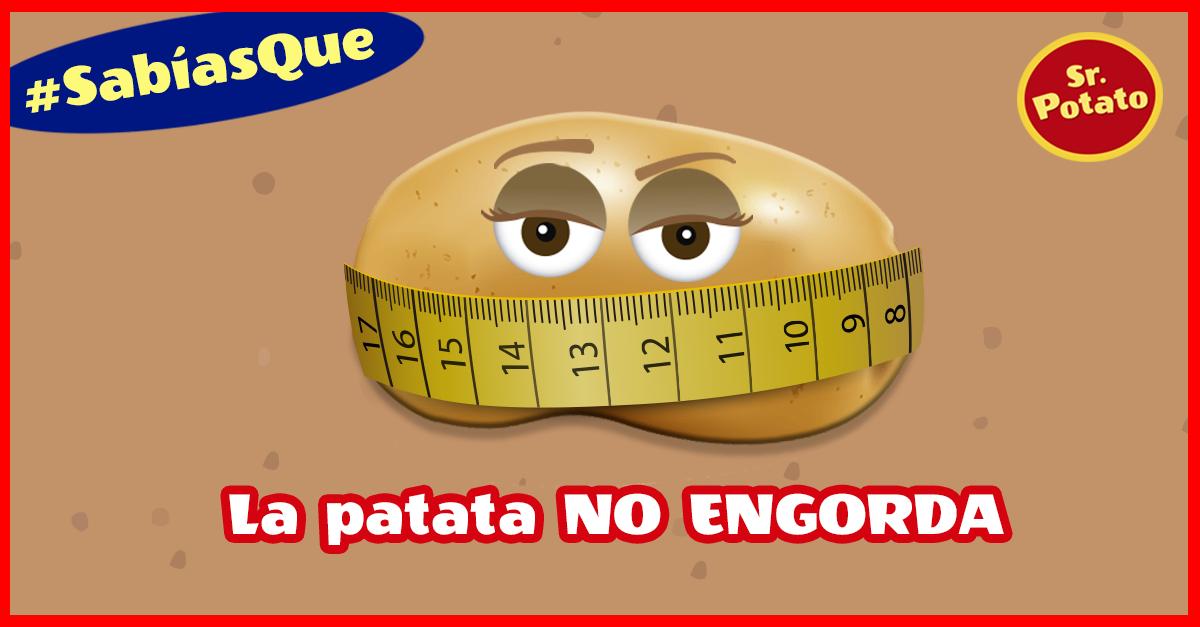 Que No Te Engañen: ¡La Patata No Engorda!