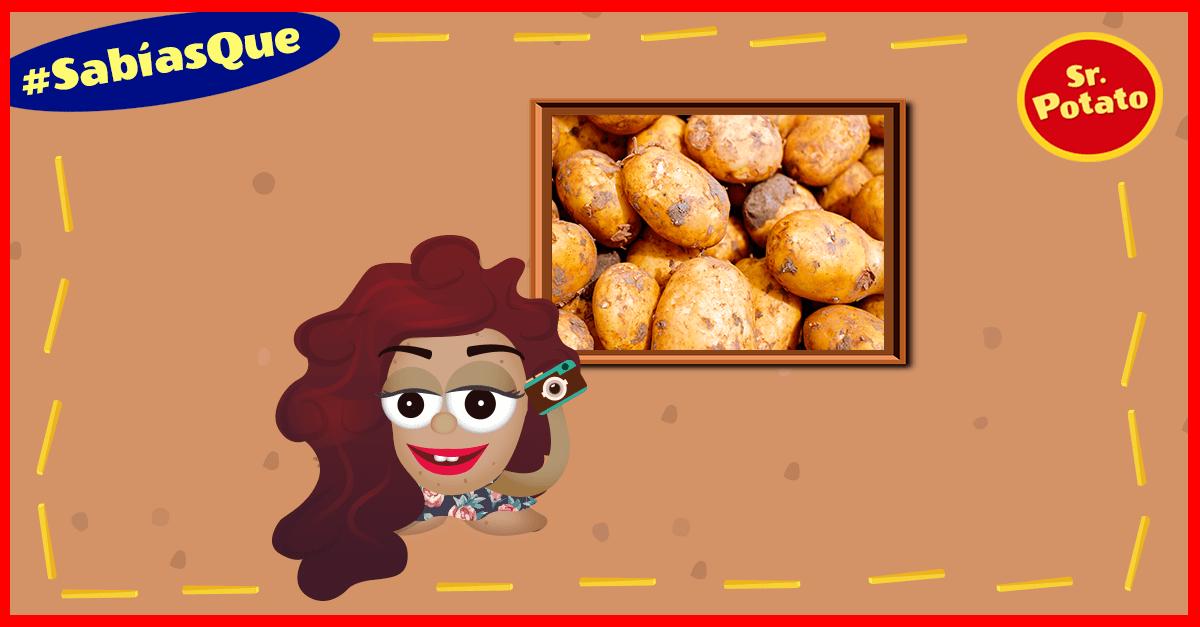 ¿Sabías Que Existe El Museo Internacional De La Patata?